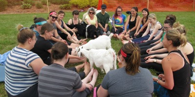 Circle at Mapleton's Organic Goat Yoga
