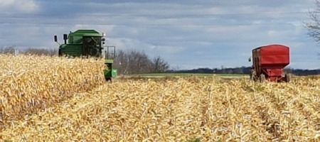 Combine and gravity boxes in field for corn harvest