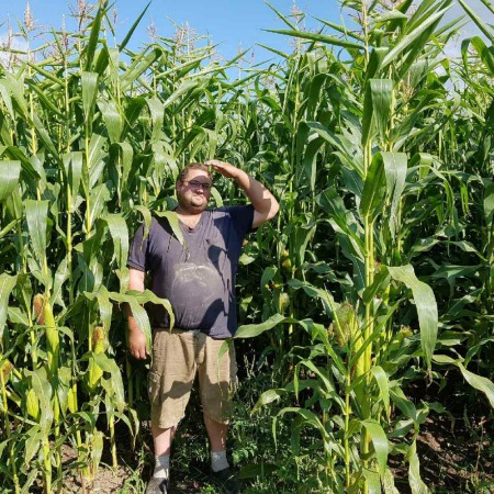 Crop manager standing in corn field at Mapleton's