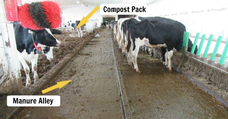 Manure Alley vs Compost Pack