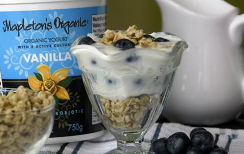 Mapleton's Organic Blueberry Yogurt